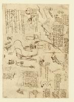 119v_Anatomical_Studies_12641v_119v